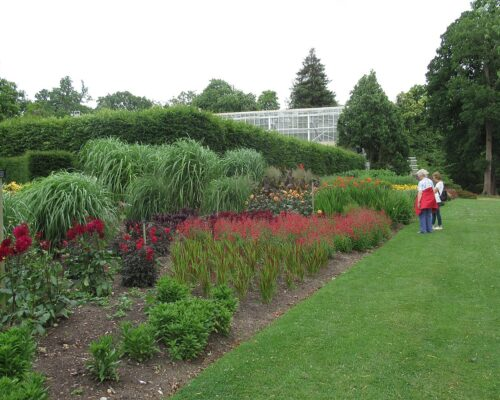 The Savill Gardens & Cream Tea River Cruise