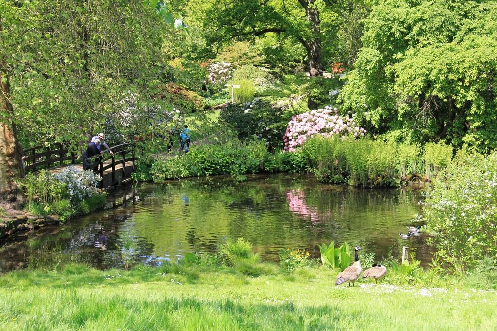 Savill Gardens & Cream Tea River Cruise