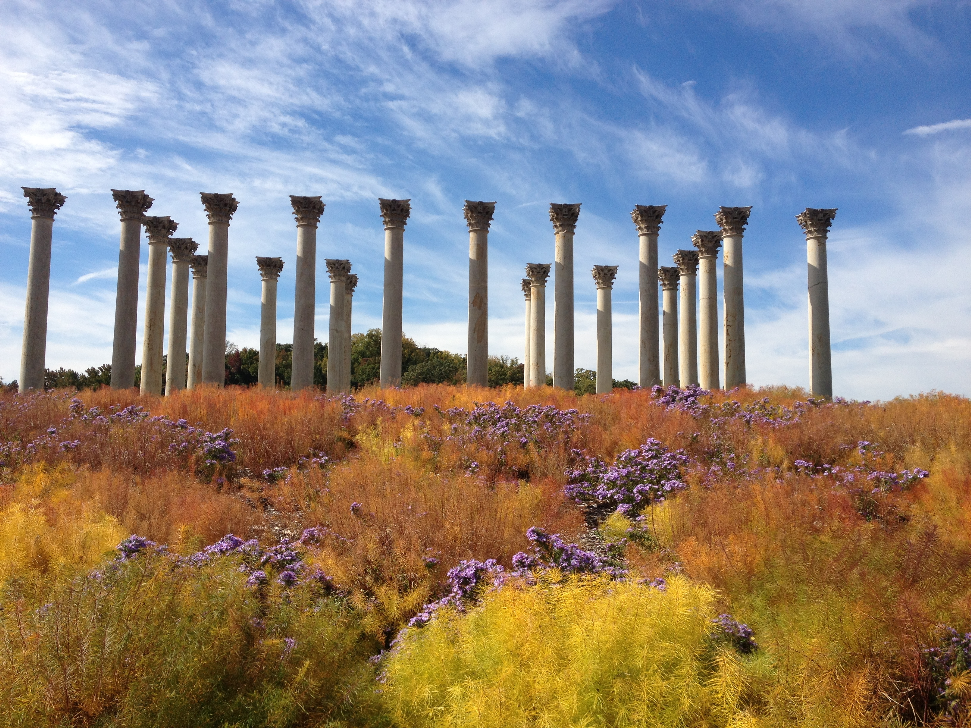 National Arboretum – Armed Forces Day